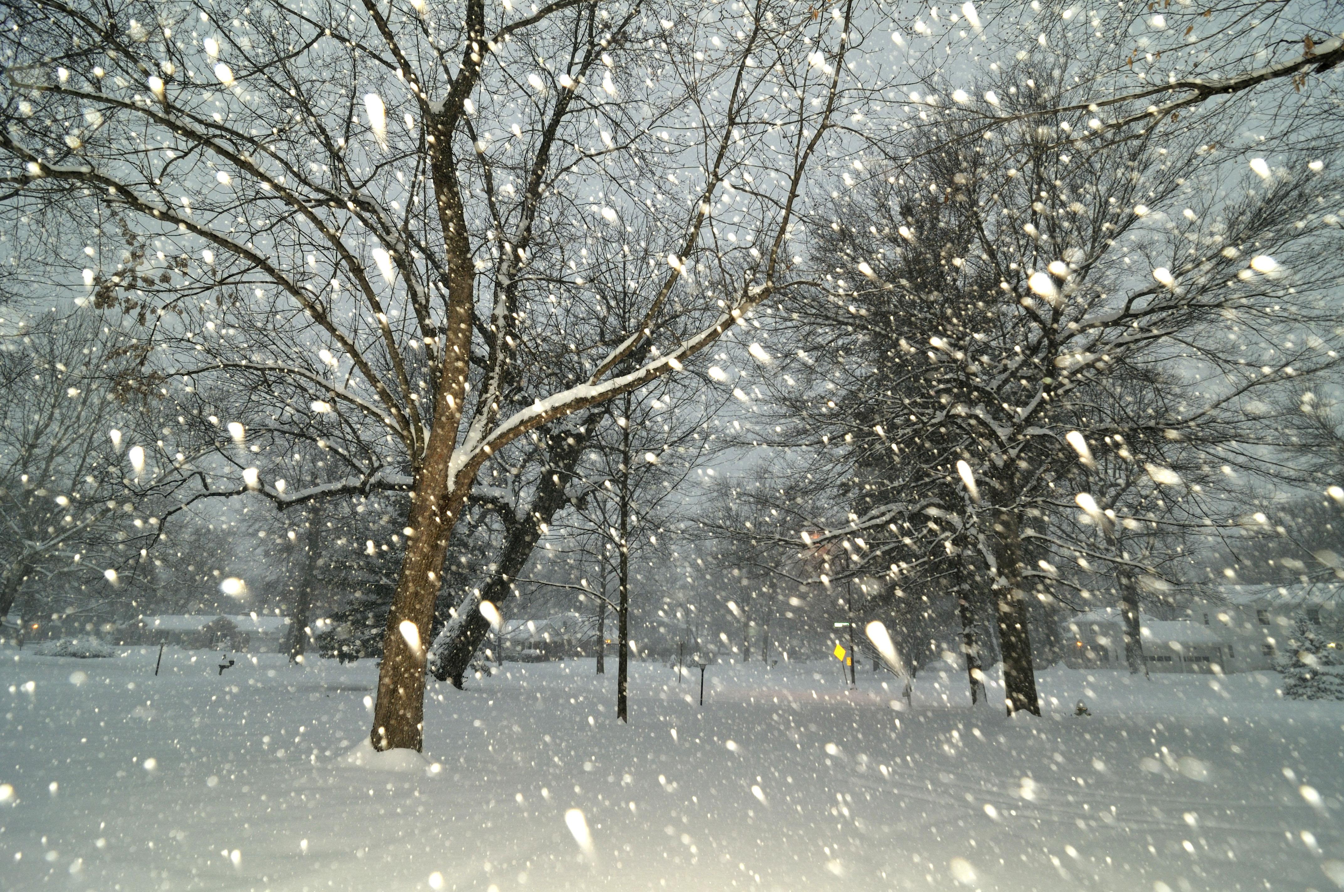 Анимация снега на фото приложение, приду картинки открытки